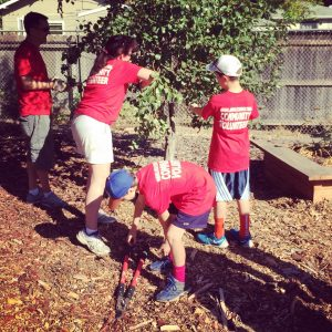 a group photo of people in red shirts planting a tree.