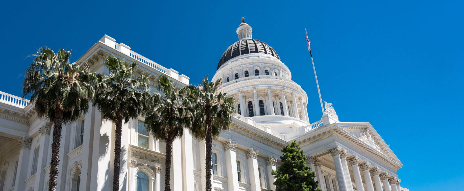 An image of the CA Capitol building.